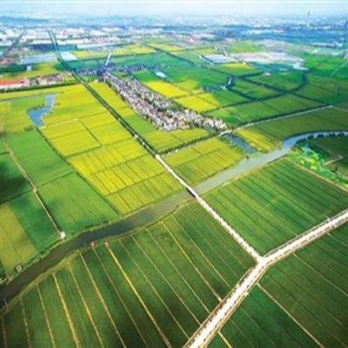 生态农产品种植